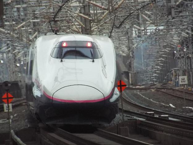 E2系J69編成 (1)