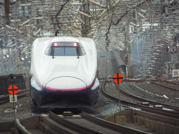 E2系J69編成 (5)