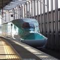 E5系U23編成 (4)