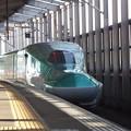 E5系U23編成 (5)