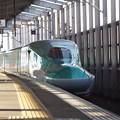 E5系U23編成 (8)