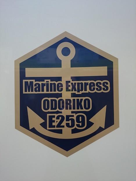 マリンEXP踊り子 ロゴ