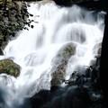 写真: 梅雨時の滝