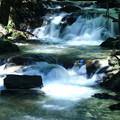 写真: 2段滝!