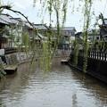 写真: 01水郷-3848