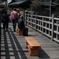 写真: 09木橋-3858