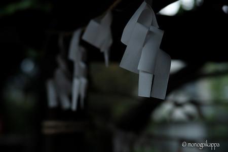 紙垂_f2-4220