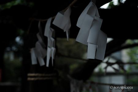 紙垂_f4-4222