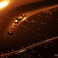 写真: オレンジの水滴-4246