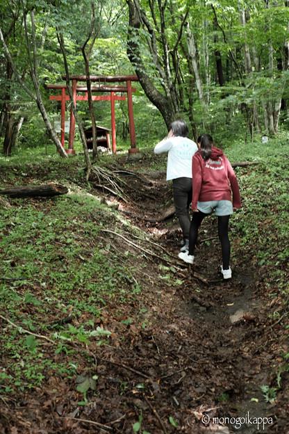 写真: 加護丸稲荷-06_四の鳥居-5605