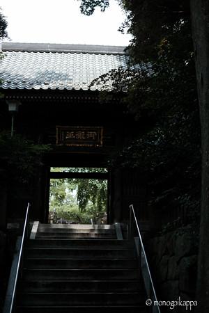 滝不動_仁王門-5731