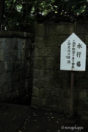 滝不動_水行場-5726