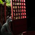 写真: 十二所神社-5780