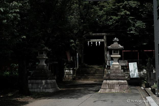 十二所神社_01鳥居-5811