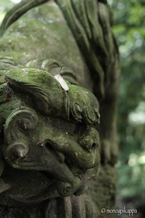 十二所神社_05狛犬-5820