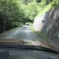写真: 母の白滝神社への道