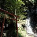 母の白滝-6019