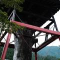 松姫神社-6133