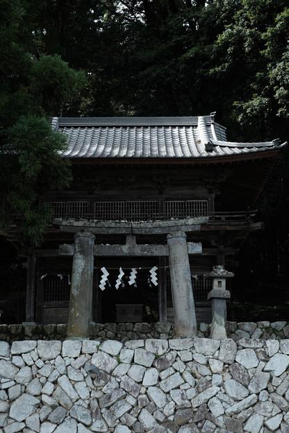 武田八幡宮02_山門-6215
