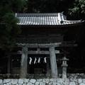 写真: 武田八幡宮02_山門-6215