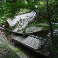 写真: 武田八幡宮04_本殿から拝殿を望む_GXR-0048272
