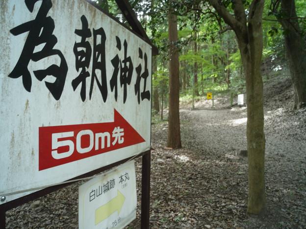 Photos: 武田八幡宮05_為朝神社_GXR-0048268
