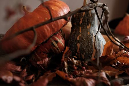 山手ハロウィン_かぼちゃ-6349