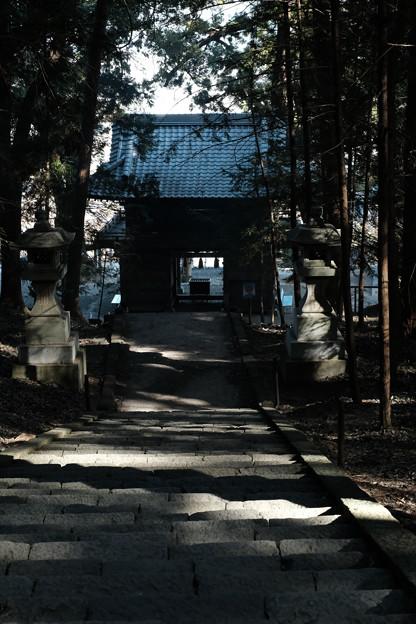 武田八幡宮_拝殿から山門をのぞむ-7079