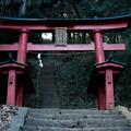 新府城03_本丸への階段-7084