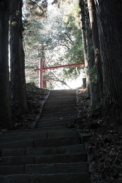 新府城04_本丸への階段-7086