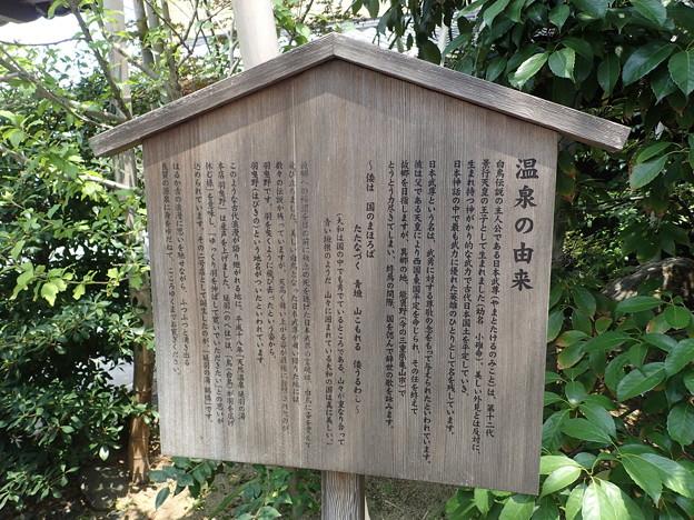 天然温泉 延羽の湯 鶴橋店