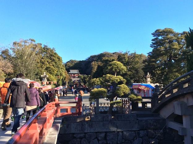 2015年1月3日 初詣 鎌倉鶴岡八幡宮へ。。