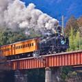 Photos: 臨時SLフェスタ号。。青部と崎平を鉄橋走る