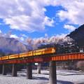 Photos: 大井川鐵道のローカル風景 鉄橋を走るSL