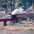 Photos: 大井川鐵道SLの風景。。川根温泉