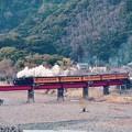 Photos: 大井川鐵道SL。。川根温泉の鉄橋を渡る