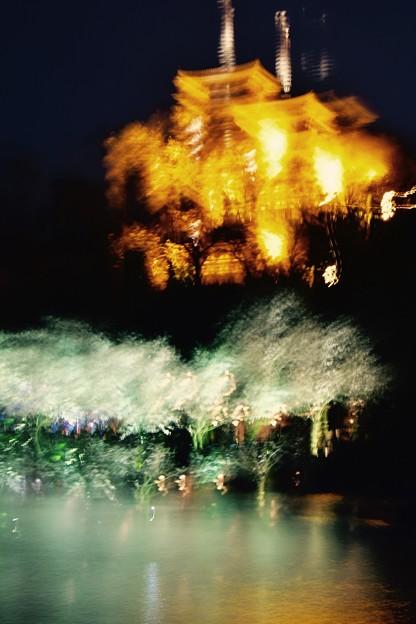 強風で。。残像風に。。(^_^;)横浜三渓園の夜景20170402