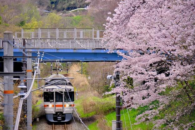 写真: 神奈川県山北町の桜。。御殿場線 20170410