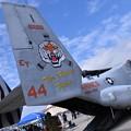 Photos: 岩国基地  VMM-262フライングタイガースET44 左右で違う尾翼1