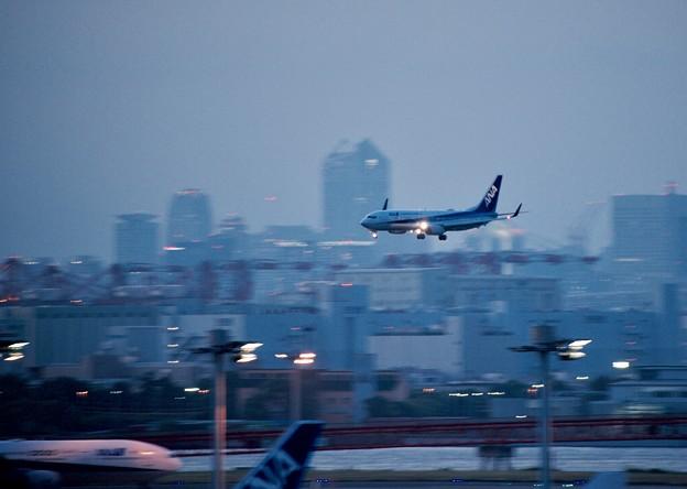 夕暮れの羽田空港ランウェイ22アプローチ ANA737 20170527