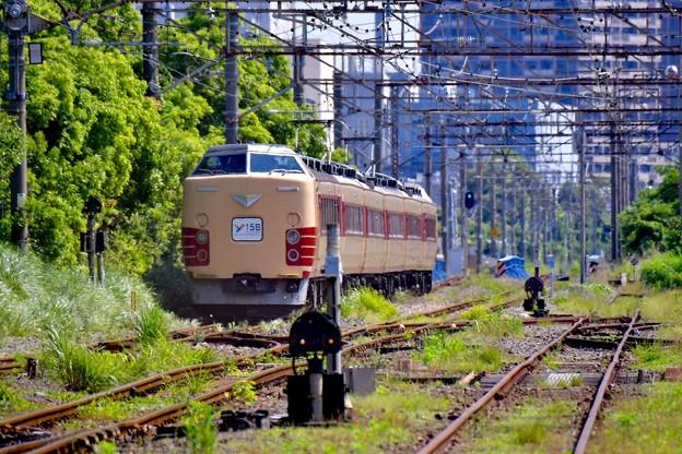 横浜の貨物線を走行。。川崎方面へ189系国鉄色 20170528