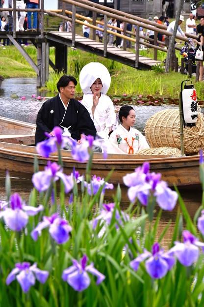 花菖蒲の結婚式を彩る。。20170611