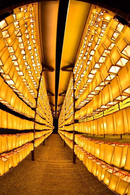 みたま祭りの名物。。提灯の壁(^^) 魚眼レンズで 20170715