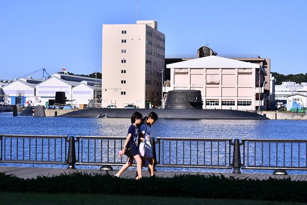 日常のヴェルニー公園の風景。。軍港の町横須賀(2)  20170918