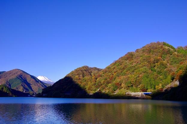 撮って出し。。朝早くから青い空の丹沢湖湖畔紅葉 11月12日