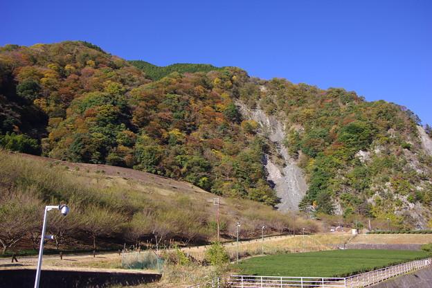 撮って出し。。神奈川県の水瓶の三保ダムの山の紅葉 11月12日