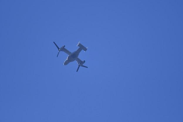 Photos: 入間基地上空にオスプレイ。。飛来 20171030