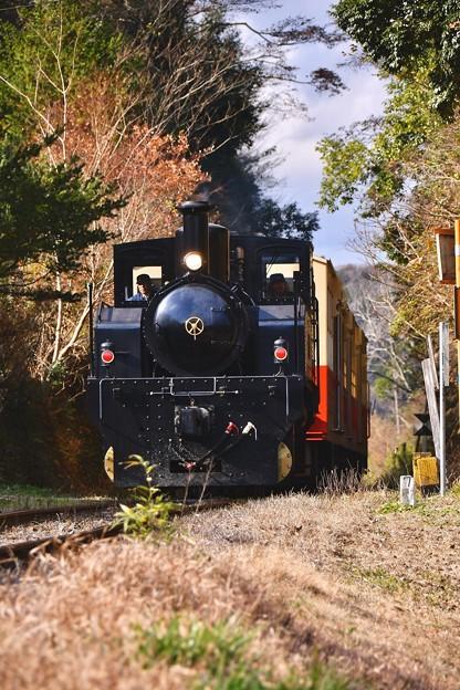 小湊鉄道トロッコ列車。。まもなく養老渓谷駅へ 20171210