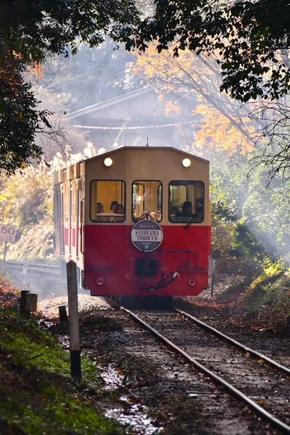 小湊鉄道トロッコ列車。。バック走行 20171210