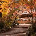 2014年・鍬山神社の紅葉